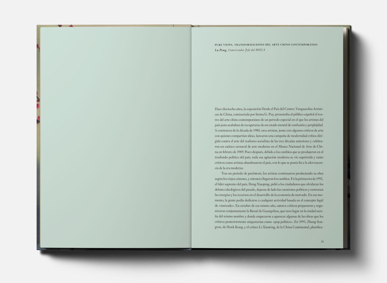 Silvia Miguez-Exhibition&Catalogue-Pure Views